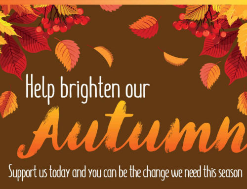 Help Brighten Our Autumn